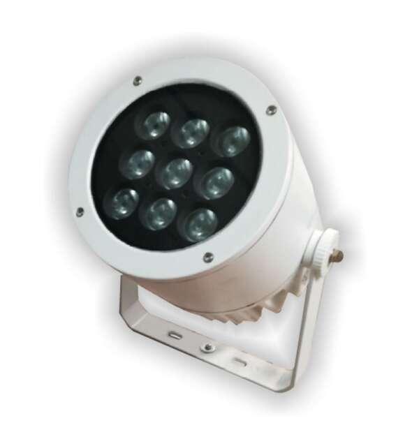 Светильник для улицы Caranx белый